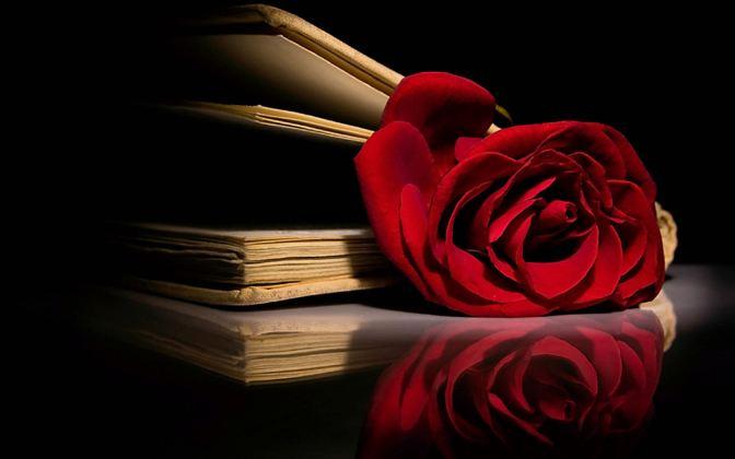 Les lectures d'Eve : «Chick lit», humour, amour…